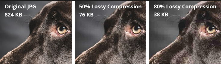 الفرق بين Lossy وLossless وwebp lossless.