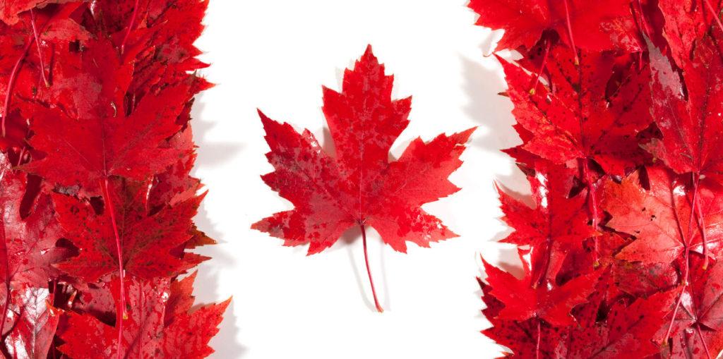 قرار كندا بفتح باب اللجوء السريع للمصريين بين الحقيقة والوهم (2017 + المصادر)